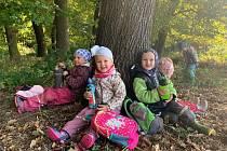 Děti z Mateřské školy Čtyřlístek v Milenově vysadily smíšený lesík.