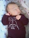 Alex Komlyk, Prosenice, narozen 4. března v Přerově, míra 50 cm, váha 3540 g