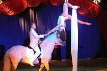 Cirkus Berousek v Hranicích