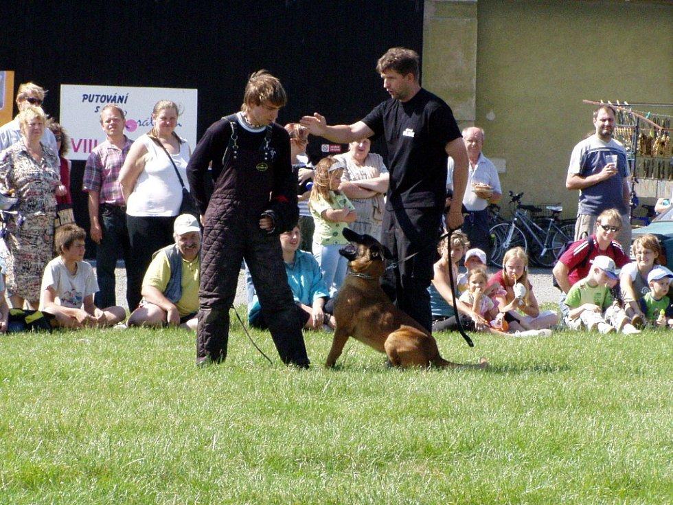 Stážníci hranické Městské policie předvedli ukázku dopadení pachatele pomocí vycvičeného psa.