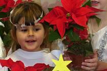 Z výtěžku za prodej Vánočních hvězd se již 12 let každoročně radují malí pacienti.