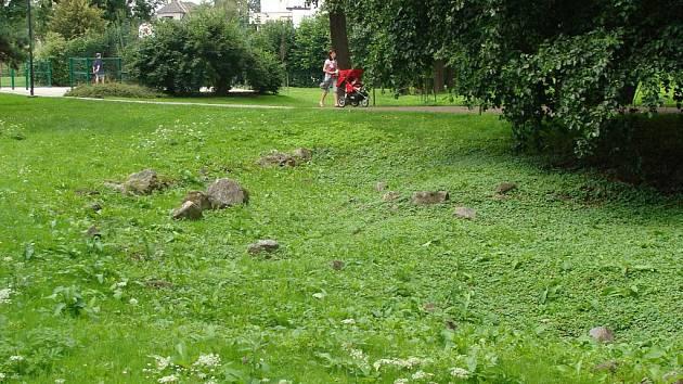 Městský park Michalov.