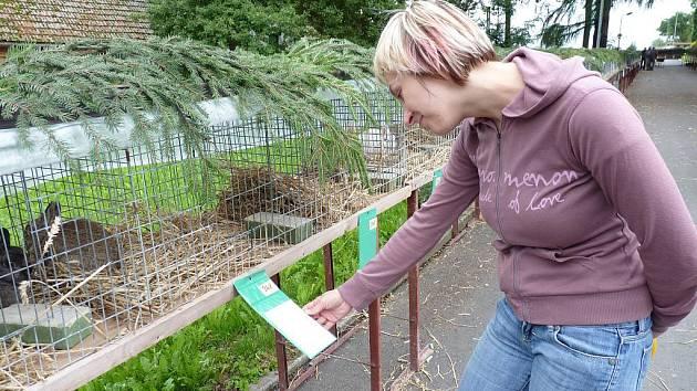 Nejen králíky, ale i různý druhy drůbeže a ptactva mohl vidět každý, kdo přišel na chovatelskou výstavu do Malhotic.