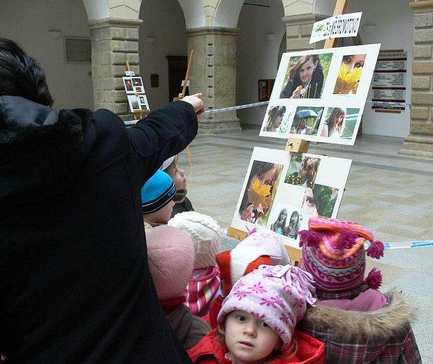 ZŠ a MŠ Šromotovo představila v hranické dvoraně zámku expozici soutěžních fotografií.