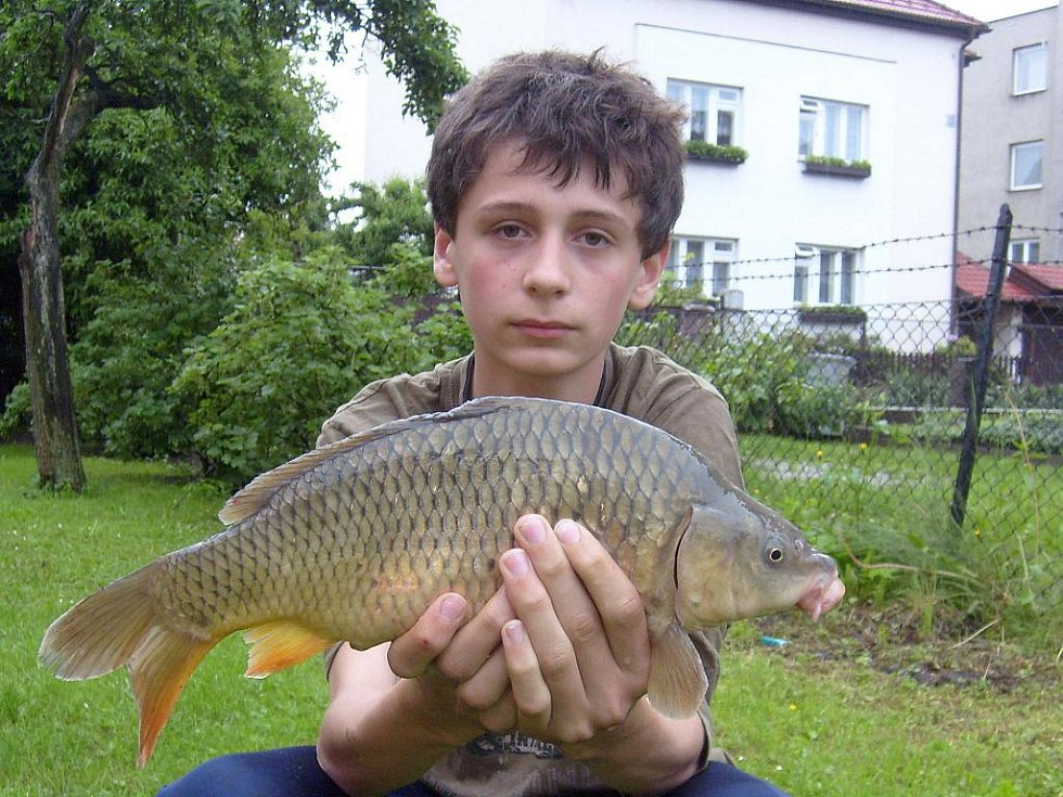 Svůj první úlovek po úspěšném zakončení rybářského kurzu chytil v neděli 30. května patnáctiletý Lukáš Mátl z Hranic. Kapra chytil na žížalu na rybníku v Drahotuších.