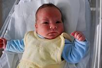 Vojtěch Frydrych, Loučka, narozen 3. listopadu v Přerově, míra 52 cm, váha 4 230 g