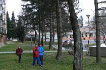 Stromy na sídlišti Hromůvka
