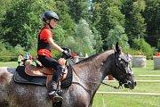 Závody koňských spřežení v Hustopečích nad Bečvou