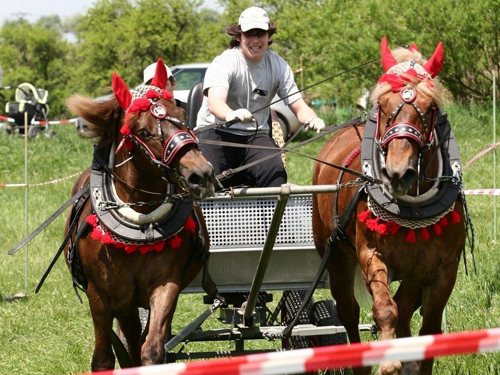 V Rouském proběhly závody vozatajů.