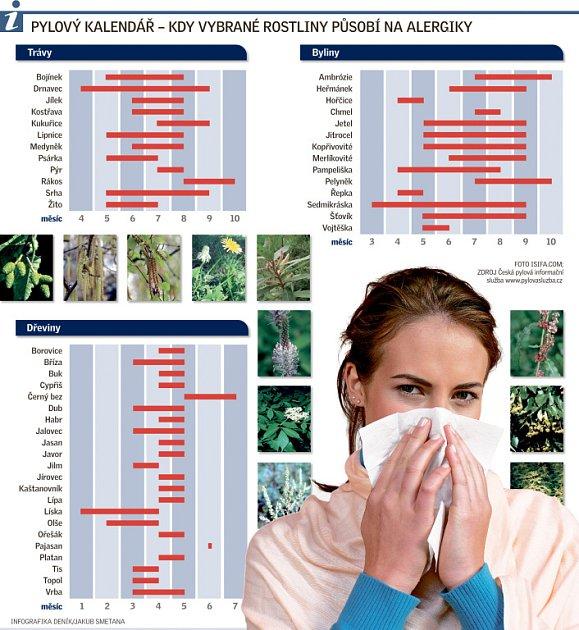 infografika alergie