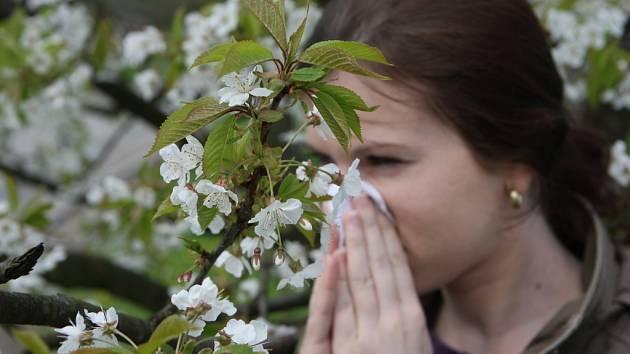 Vrtkavá příroda je letos k nemocným neúprosná, zhoršení zdravotního stavu nahrává slunečné počasí a vítr.