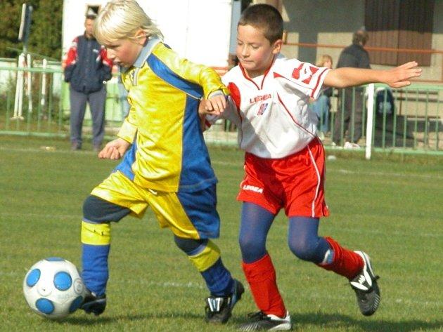 Turnaje mladších přípravek ročníku 2001 se zúčastnilo osm družstev