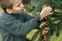 Výroba ozdob se v loňské roce líbila dětem i dospělým.