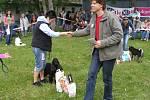 Majitelé psů předvedli své miláčky zrakům diváků i poroty.
