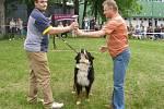 Ceny majitelům pejsků předával primátor Přerova Jiří Lajtoch. Ten předal cenu i nejhezčímu psovi výstavy, čínskému chocholatému Kedovi.