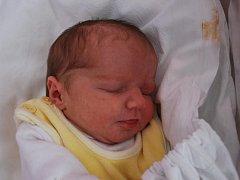 Zuzanka Regentová, Přerov, narozena 13. února 2012 v Přerově, míra 45 cm, váha 2 800 g