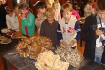 Desítky dětí ze základních a mateřských škol zavítaly v pátek dopoledne na tradiční výstavu hub do klubu Teplo na Horním náměstí v Přerově. Akci připravil zdejší mykologický klub a potrvá až do soboty 19. září.