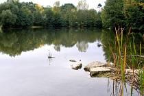 Malá laguna v Přerově bude připsána na seznam přírodních památek.
