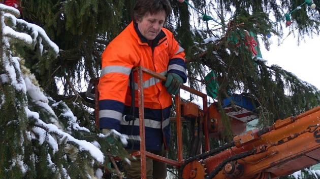 Konec vánočního stromu.