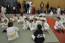 Velkého mezinárodního turnaje mládeže pod názvem Slovak open 2008 v Galantě se zúčastnilo třináct mladších a starších žáků Femaxu.