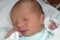 Andrea Dvořáková, Přerov, narozena 3. října  2011 v Novém Jičíně, míra 47 cm, váha  2 660 g