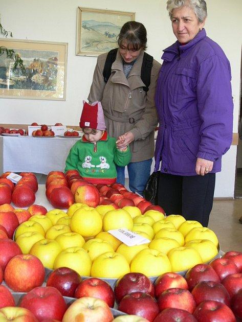 Výstava ovoce a zeleniny.