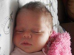 Anna Chaloupková, Vinary, narozena dne 6. října 2015 v Přerově, míra: 50 cm, váha: 3310 g