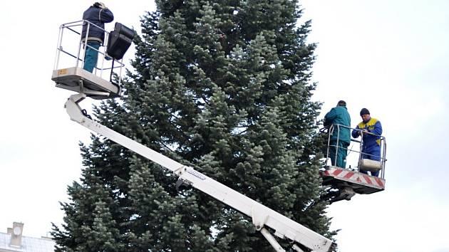 Zdobení vánočního stromu v Hranicích