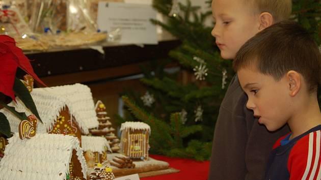 Od pondělí 1. prosince až do pátečního dopoledne je k vidění ve Středisku volného času Atlas a Bios v Žižkově ulici tradiční Vánoční salon.
