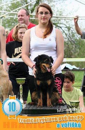 Na jubilejním desátém ročníku Voříškiady vHranicích zvítězili vkategorii voříšci pes Marley majitelky Kláry Martínkové zHorní Lideče a vkategorii pejsci bez průkazu původu australský ovčák Soren Lucie Richterové zOstravy.