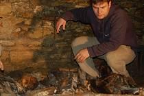 V kryptě jsou uloženy kosterní ostatky, které byly původně uloženy ve třech hrobkách a několika hrobech.