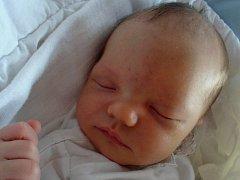 Jindřich Haša, Zámrsky, narozen dne 9. května 2015 ve Valašském Meziříčí, míra: 51 cm, váha: 3550 g