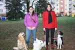 Kynologický kroužek, který vedou dvě mladé slečny Martina Svozilová a Magdaléna Důjková, má ve škole úspěch. Děti se zde učí, jak se správně chovat k psům