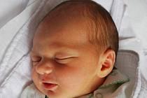 Peťulka Dreiseitlová, Hranice, narozena 27. října 2011 v Přerově, míra 51 cm, váha 3 400 g