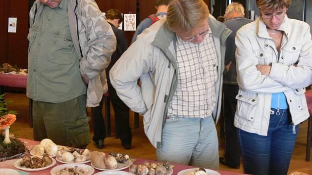 Výstavu hub v Přerově si letos prohlédlo zhruba dva tisíce lidí.