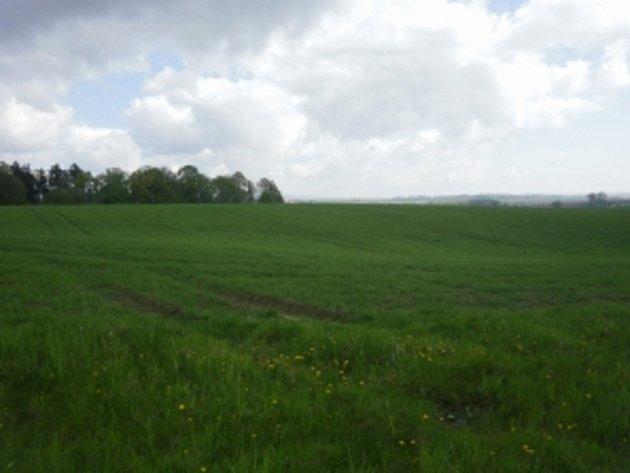 Pozemky - cvičiště Skalka