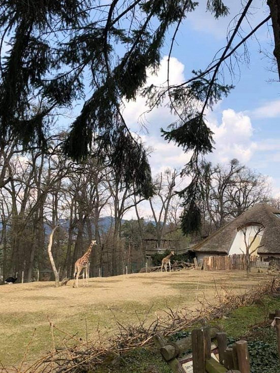 Na návštěvě v Zoo Lešná.