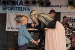 Hustopečské Dny - sobota 31. 8. 2013