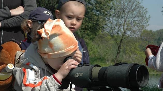 Exkurze na tovačovských rybnících bude součástí akcí konaných u příležitostí Evropského festivalu ptactva.