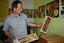 Hraničtí včelaři představují Včelí muzeum, kde si návštěvníci prohlédnou staré fotografie, výtvarná díla dětí a především starší pomůcky k vytáčení medu a chovu včel.