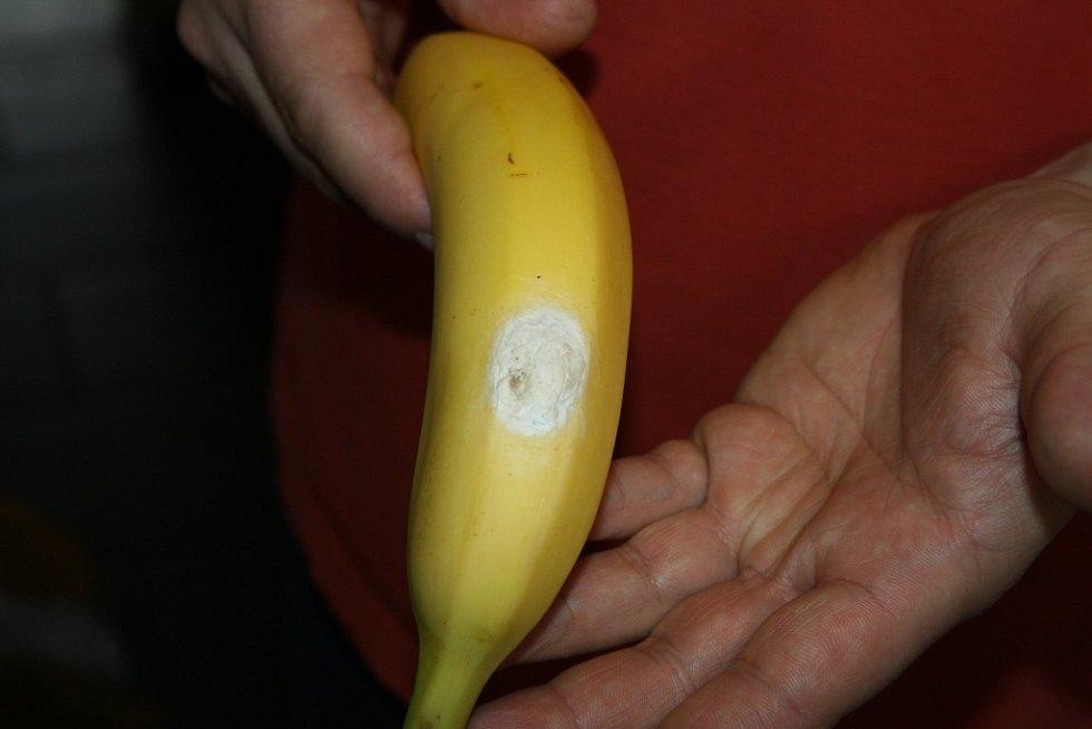 V jedné z hranických prodejen našli v banánové krabici exotického pavouka