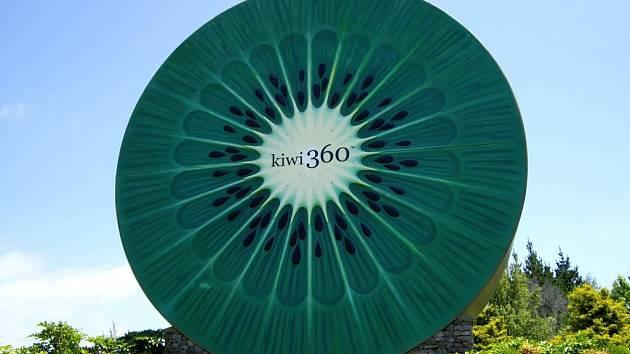 Symbolem Nového Zélandu je kiwi. Pokud má tento rozměr, není možné ho přehlédnout.