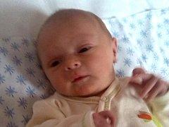 Valentýna Melnarová, Teplice nad Bečvou, narozena dne 27. prosince 2013 ve Valašském Meziříčí, míra: 45 cm, váha: 2600 g