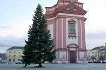 Vánoční strom na hranickém náměstí stojí i v polovině února