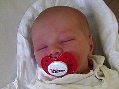Martin Schwarz, Přerov, narozen dne 21. srpna 2013 v Přerově, míra: 51 cm, váha: 3344 g