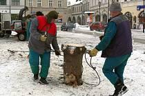 Odstraňování vánočního stromu z hranického náměstí