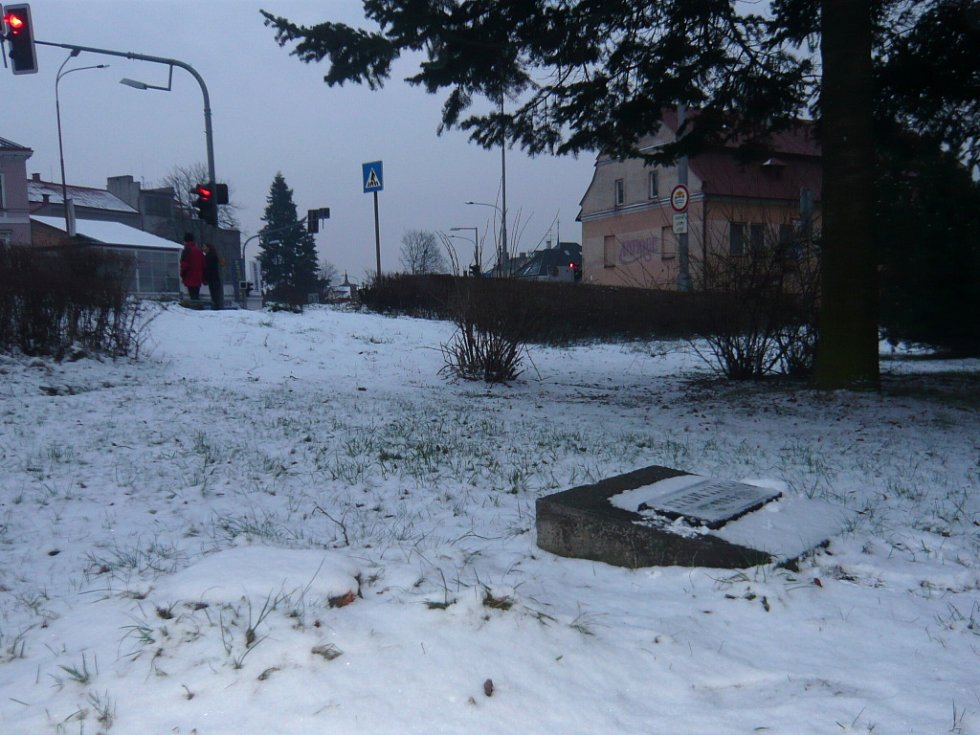 Strom míru v Hranicích, na němž se loni v listopadu oběsil dvacetiletý bývalý student jedné z místních středních škol, skácel vandal.