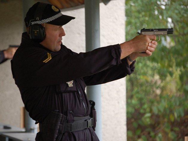 Celkem jedenadevadesát střelců se utkalo ve střelecké soutěži v Radslavicích.