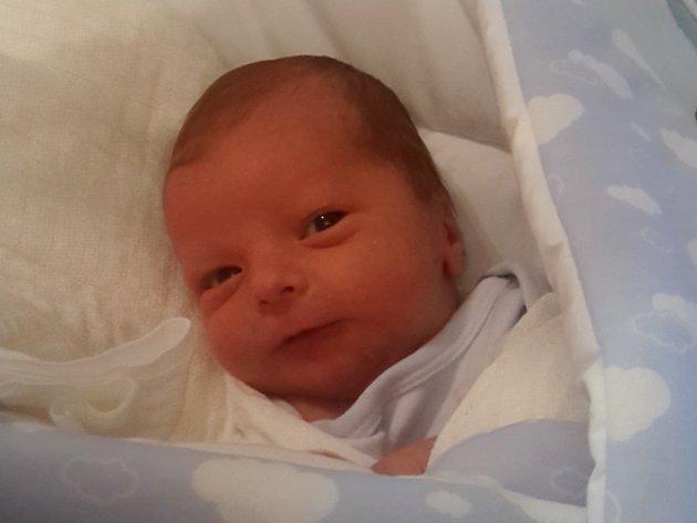 Štěpán Šromota, Dluhonice, narozen dne 8. prosince 2016 v Přerově, míra: 48 cm, váha: 3164 g