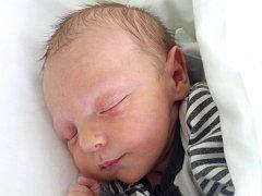 Michael Staša, Horní Moštěnice, narozen dne 23. dubna 2015 v Přerově, míra: 48 cm, váha: 3490 g